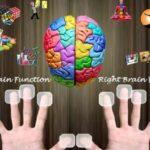Дерматоглифика: Биометрическое тестирование по отпечаткам пальцев — миф или реальность