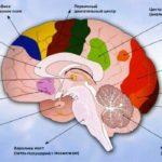 Сознание и подсознание: что у тебя в голове, то и в жизни